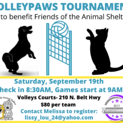 Volleyball Tournament September 19