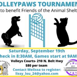 Volleyball Tournament September 19